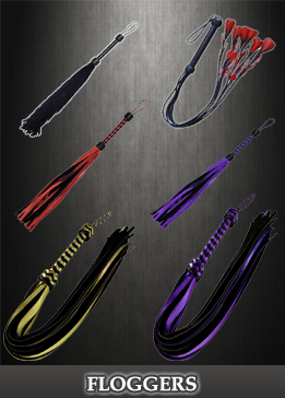 Rainbow_Station_Flogger